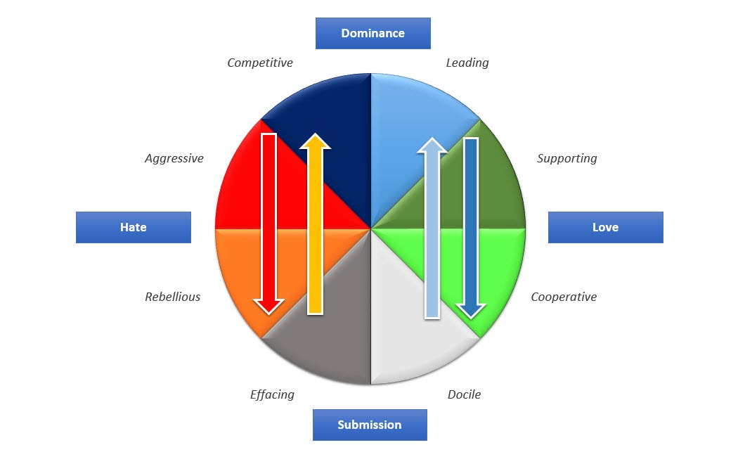book Management Reporting und Behavioral Accounting: Verhaltenswirkungen